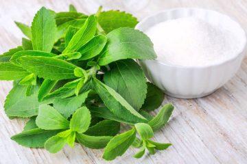 Stevia Sugar alternative