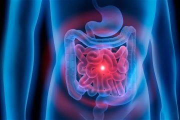 What Is Gut Health? Why Is It Important?